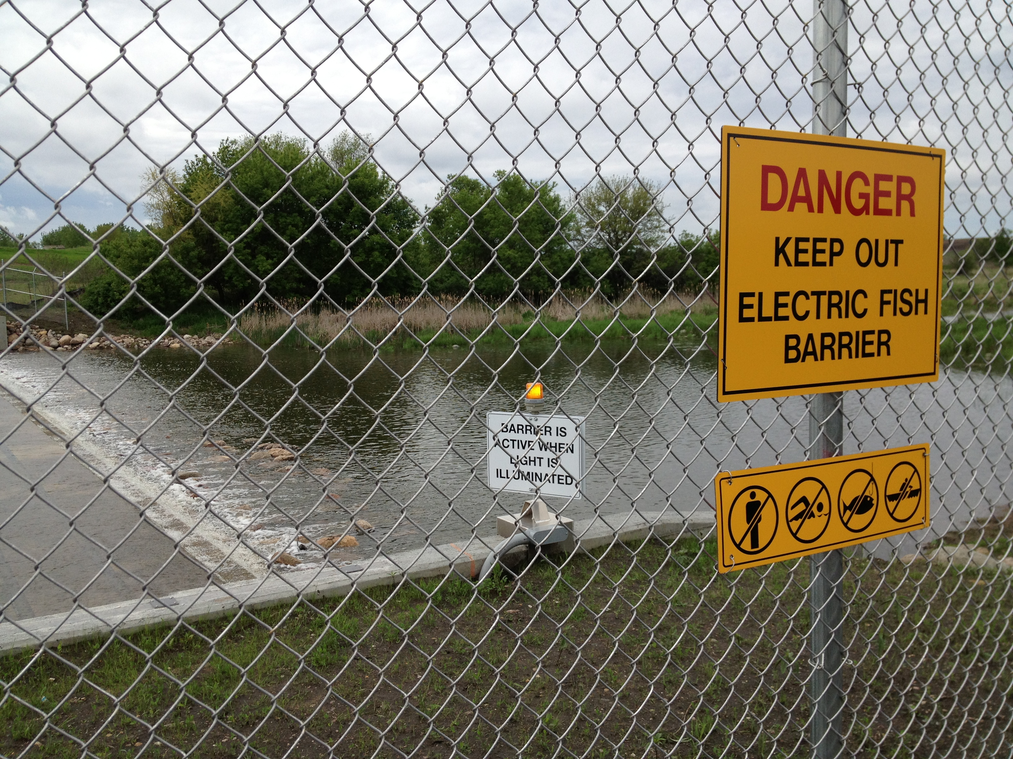 Electric fish barrier operating