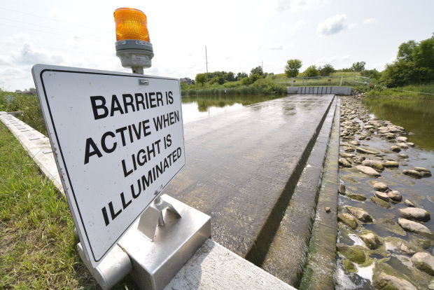 $1 million carp barrier having impact in Iowa Great Lakes, officials say